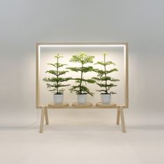 Build a spice garden. GreenFrame Adds a Window of Greenery Anywhere - Design Milk Solid Wood Furniture, Diy Furniture, Furniture Design, House Plants Decor, Plant Decor, Plant Design, Garden Design, Potted Plants, Indoor Plants
