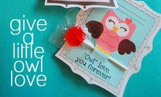 owl love free valentine's day printable cards