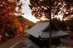 http://nsp-jp.com/gifu/  護国之寺-客殿から本堂を望む Gokokushiji Temple in Gifu city Gifu Prefecture Japan  #護国之寺 #岐阜市 #岐阜県  #故郷 #故郷巡礼 #聖地巡礼 #岐阜命名450年 #写真好きな人と繋がりたい #gifuphoto #travel #traveling #journey #tourism #photo #sugiyamanobu #Unknownjapan #instagram #instagramjapan #JapaneseTemple #JapaneseShrine #JapaneseTradition #TravelJapan #JapanTrip #ExploreJapan #JapanAdventure #JapanHoliday #CoolJapan #WonderfulDestinations #Amazing
