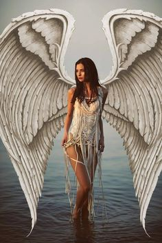 Angel by Sarahlouisephotography.com