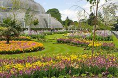 Kew Gardens © RBG Kew