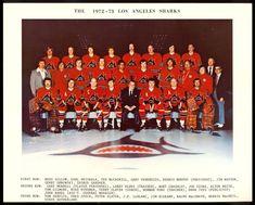 Stars Hockey, Ice Hockey, Team Pictures, Team Photos, Jim Watson, Hockey Room, Hockey Games, Wayne Gretzky, Philadelphia Flyers