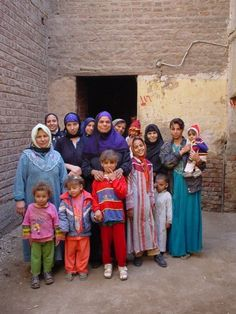 Microcredit projet in Sohag, Egypt : a cow
