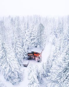 20 Best Travel Destinations for 2020 the Most Beautiful Places Places To Travel, Places To See, Montana Winter, Whitefish Montana, Destinations, Winter Cabin, Winter Scenery, Drone Photography, Forest Photography