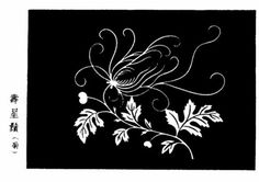 Birthday shall (chrysanthemum)