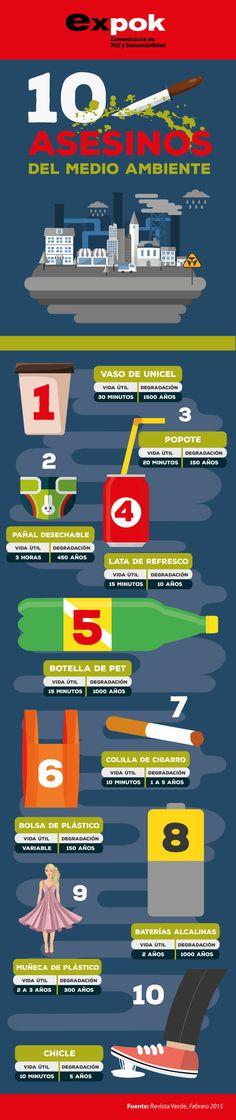 Infografia-10-asesinos-del-medio-ambiente