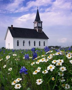 Rock Church in Spring.... Texas...God's beauty unfolds