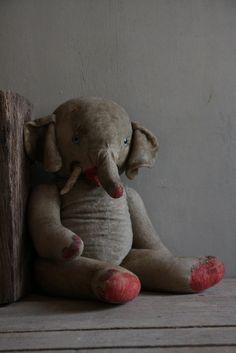 lovely old elephant