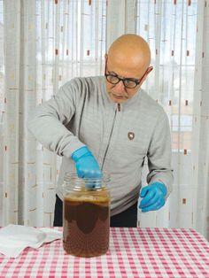 Kombucha: la ricetta e i consigli di Chazen.it - Five o' clock tea #kombucha #tè #chazen Tea Blog, Kombucha