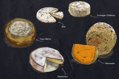 FORBIDDEN CHEESE! We had to draw them because each and every one of these delicacies is illegal to import into the USA.