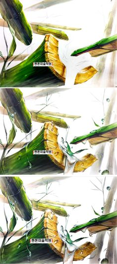 여름에 대나무 시원하게 물 흐르는.... 기초디자인 과정작 완성작 / 개체묘사와 개체표현 도움 되길~ 진짜 강사 처럼 그릴 수 있는 방법을 훈련시켜주는 펜톤미술학원 전국 각지역에서 어떻게 소문듣고 찾아오네요~ water, bamboo, green Industrial Design Sketch, Sketch Markers, Plant Illustration, Shape And Form, Japan Art, Drawing Tips, Trees To Plant, Art Lessons, Digital Art