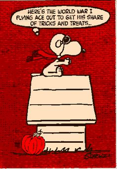 World War 1 Snoopy the Flying Ace