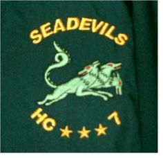 SEADEVILS HC-7 CREST ON JACKETS  this is just 1 color jacket - HUNTER GREEN color jacket Embroidery Services, Hunter Green, Green Colors, Company Logo, Graphic Sweatshirt, Sweatshirts, Jackets, Down Jackets, Colors Of Green