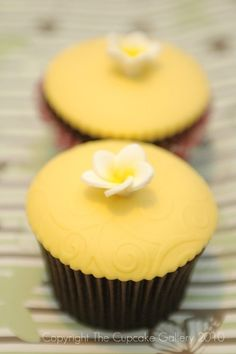 Gallery - the cupcake gallery
