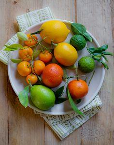 Kumquats, Limes, Oranges, Meyer Lemons, & Kaffir Limes