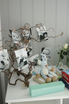 Trollhassel gren for å henge bilder på📸🖼 Baby Event, Lets Celebrate, Baby Boy Shower, Kids And Parenting, Christening, Baby Love, Christmas Diy, Diy And Crafts, Kids Room
