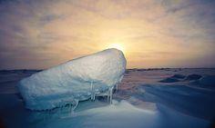 Arctic 'heatwave' hits the North Pole
