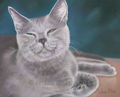 A Cat Is A Cat - But Never Just That! by Pat Spieth on Etsy