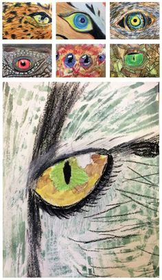 This middle school animal eyes art lesson is fantastic for teaching students the element of design for line and texture through a new set of eyes! Elements Of Art Texture, Elements Of Art Line, Zentangle Patterns For Beginners, Texture Art Projects, Middle School Art Projects, Middle School Crafts, Animal Art Projects, Animal Crafts, 6th Grade Art