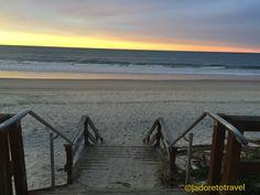 Sunset dog walk along Palm Beach QLD