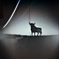 "Solarigrafia del proyecto ""Toros al sol"" 14-29.06.2013"