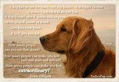 Words to live by.  -ParkerPup