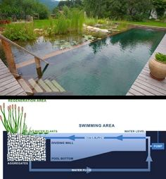 New Ideas Backyard Pond Natural Swimming Pools Natural Swimming Ponds, Natural Pond, Swimming Pools, Lap Pools, Indoor Pools, Landscape Design, Garden Design, Ponds Backyard, Backyard Ideas