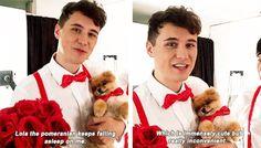 Dan Howell - Phil Lester - Dan and phil - dogs - photoshoot