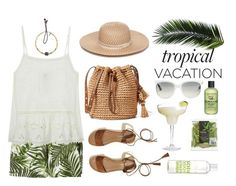 """""""Welcome to Paradise: Tropical Vacation"""" by blacksky000 ❤ liked on Polyvore featuring diverse, Hollister Co., Collection XIIX, Catherine Michiels, La Compagnie de Provence, Ray-Ban and Bumble and bumble"""