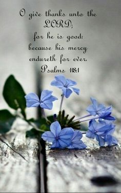Inspirational sayings and quotes by Jesus, as written in Scriptures from Bible versions NIV, NKJV and ESV. Bible Verses Quotes, Bible Scriptures, Faith Quotes, Bible Book, Peace Quotes, Praise The Lords, Praise And Worship, Favorite Bible Verses, Love The Lord