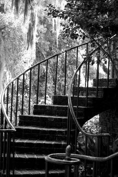 Black and White Stairs Black And White Stairs, Classic, Photography, Color, Home Decor, Derby, Photograph, Decoration Home, Room Decor