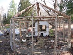 This is our timberframed chicken coop that we built. It will have netting on it in the spring to keep peacocks in. It is all built out of cedar logs. My husband did an excellent job.