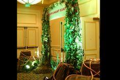 Cajun Swamp decor - photo booth ideas