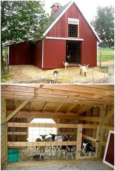 Architect Don Berg's barn design. These photos show his Candlewood Mini Barn being used for pet goats at Edwards Apple Orchard in Poplar Grove, Illinois. Goat Barn, Farm Barn, Pole Barn Plans, Small Barn Plans, Goat Shelter, Animal Shelter, Mini Barn, Mini Horse Barn, Simple Horse Barns
