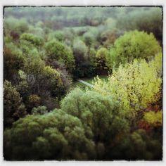 Being green ... newtobegreen.com