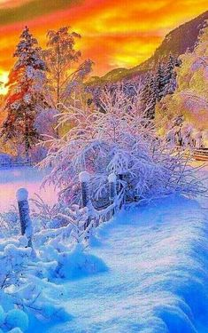Winter Szenen, I Love Winter, Winter Sunset, Winter Magic, Winter Pictures, Nature Pictures, Beautiful Sunset, Beautiful Images, I Love Snow