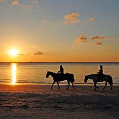 Riding a horse on the beach