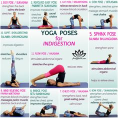 Yoga Poses For Excessive Gas How To Relieve Heartburn, Relieve Gas, Yoga For Gas, Colon Irritable, Heartburn Relief, Yoga Terms, Muscle Stretches, Stomach Stretches, Yoga Workouts
