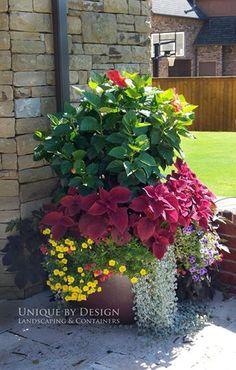 Container gardening ~