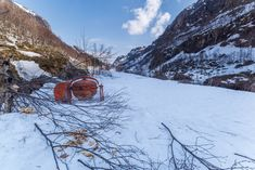 Hard working beaver - Clickasnap Concrete Mixers, Beavers, Norway, Snow, Outdoor, Outdoors, The Great Outdoors, Eyes, Let It Snow