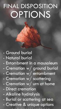 Final Disposition Options - Choices for burial, cremation, scattering, green burial, and more. Funeral Gifts, Funeral Urns, Funeral Wear, Direct Cremation, Cremation Urns, Funeral Planning, Retirement Planning, Final Expense Life Insurance, Setting Up A Trust