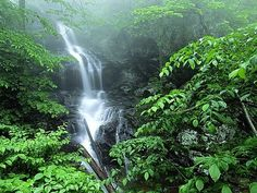 Doyles River Falls Luray - VA: Reviews from families visiting Doyles River Falls Luray - VA. This beautiful hike leads you to a waterfall surrounded by trees. A 2.7-mile round-trip trail with an 850-foot change in elevation. Allow at least three hours....