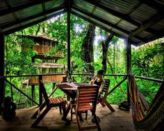"""I want to live in an green, treehouse village!   How Hogan describes the typical Finca Bellavista homeowner: """"In general, people [who live here] want a simpler lifestyle. They want a life less ordinary. They're usually very green, environmentally-conscious and want to live off the grid."""""""