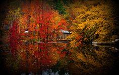 Fall Peterborough NH