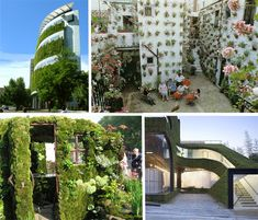 Beyond Green Roofs: 15 Vertically Vegetated Buildings
