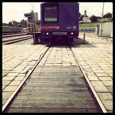Trem no Pátio de Manutenção Jabaquara #metro #subway #urban #saopaulo #sampa #sp #railway #igers #igersbrasil #igerssaopaulo #instasampa #instadroid #metrosp