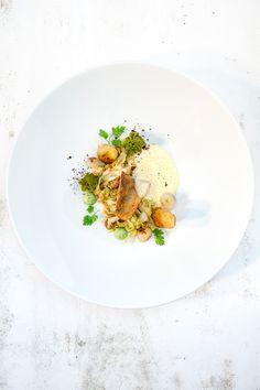 Leckeres Fischgericht mit kross auf der Haut gebratenem Zander, dazu Haselnuss-Spitzkohl, Pfeffer-Romanesco und Kerbel-Emulsion.