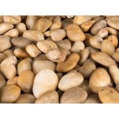 MS International 40 lb. Large Yellow Polished Pebbles Bag-LPEBMYEL5POL40 at The Home Depot