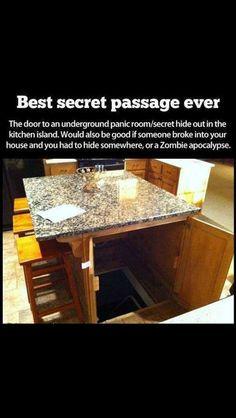 Cool! Entrance to basement, tornado shelter, panic room, or secret fort!