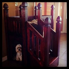 Every Dog Deserves a Bunk Bed Castle Dog Bunk Beds, Pet Furniture, Pet Products, Apartment Living, Projects To Try, Castle, Happiness, Pets, Instagram Posts